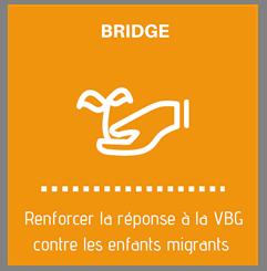 projet bridge